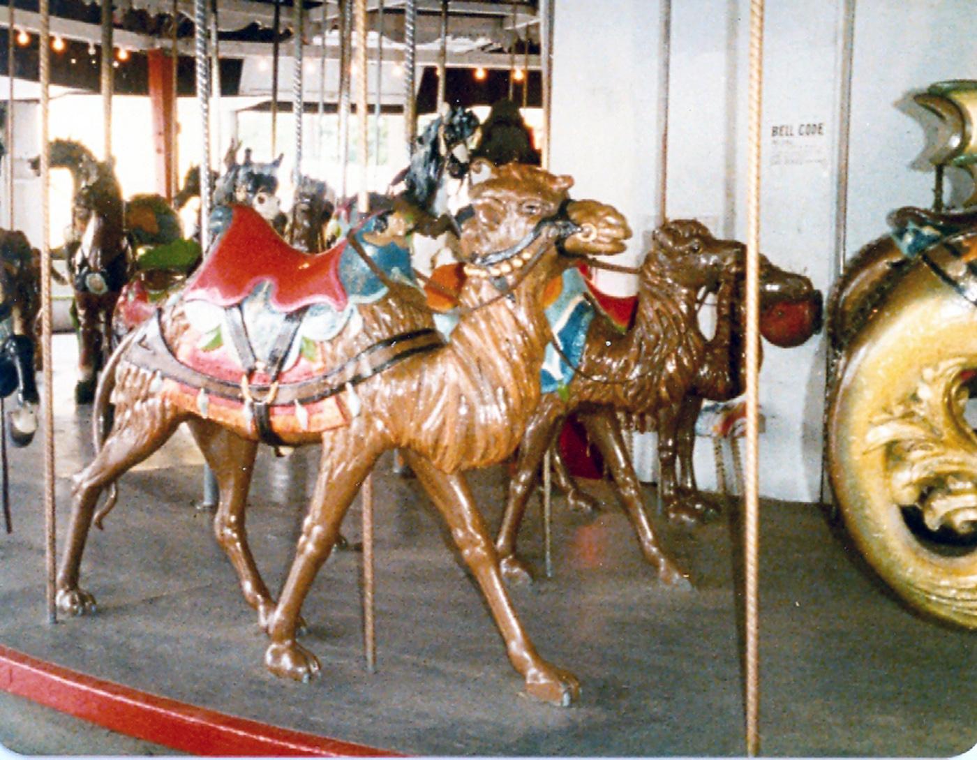 Lake-Quassy-E-Joy-Morris-Carousel-Camel