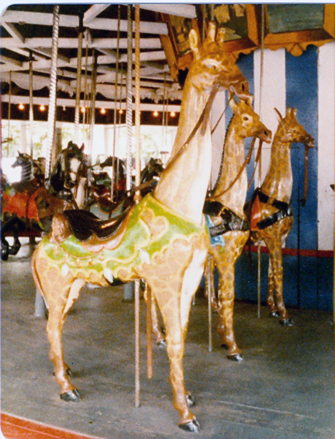 Lake-Quassy-Historic-1902-E-Joy-Morris-carousel-giraffe-2