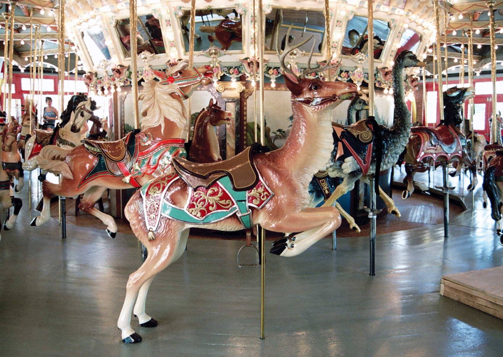 1921-Glen-Echo-Dentzel-carousel-deer