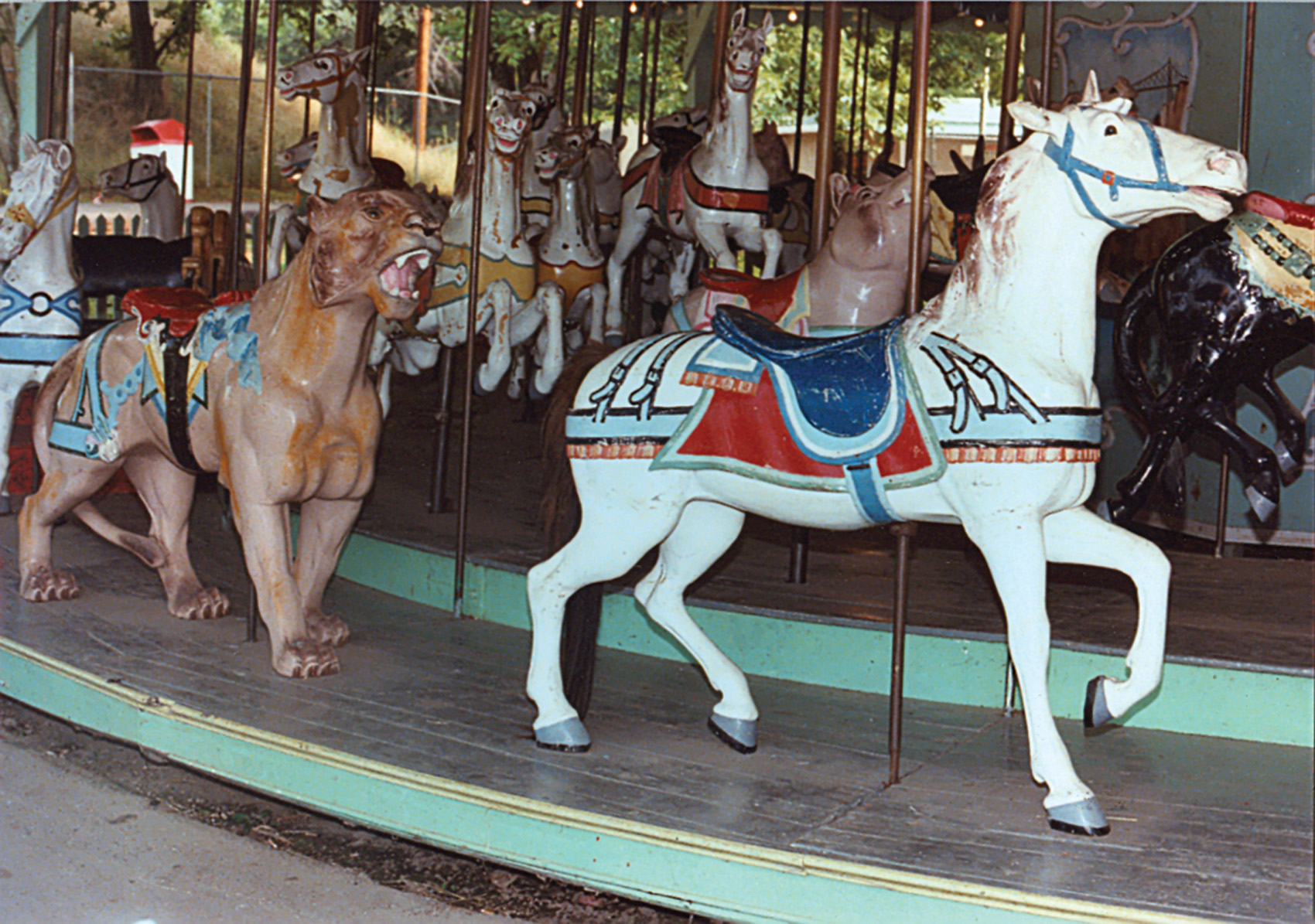 Beech-Bend-park-Dentzel-carousel-tiger-Farnsworth-photo