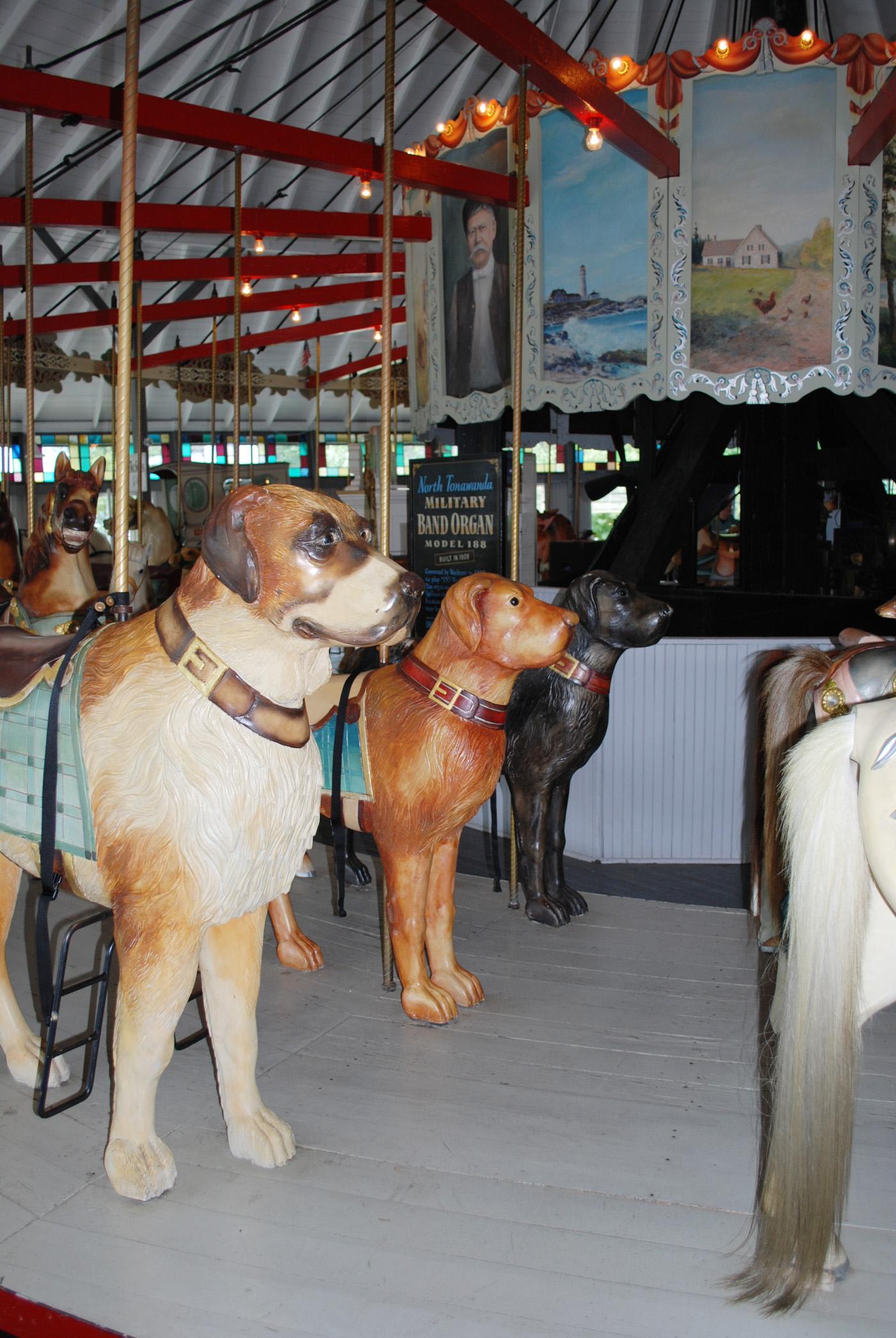 Ca-1895-Slater-Park-Looff-carousel-dogs-91