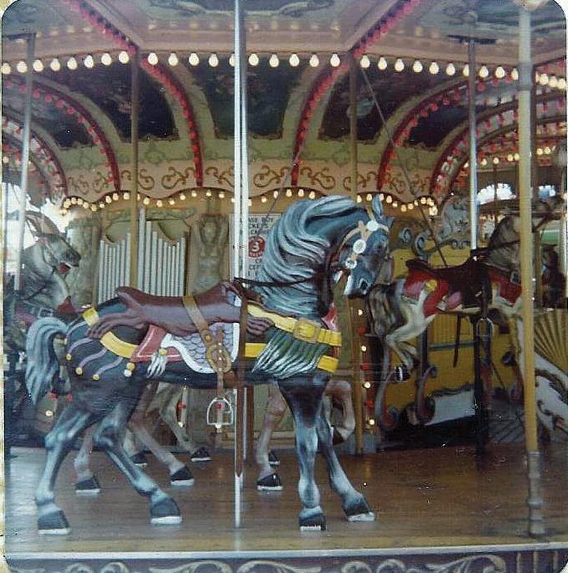 Wildwood-Sportland-Pier-Stein-and-Goldstein-carousel-horse-1970s