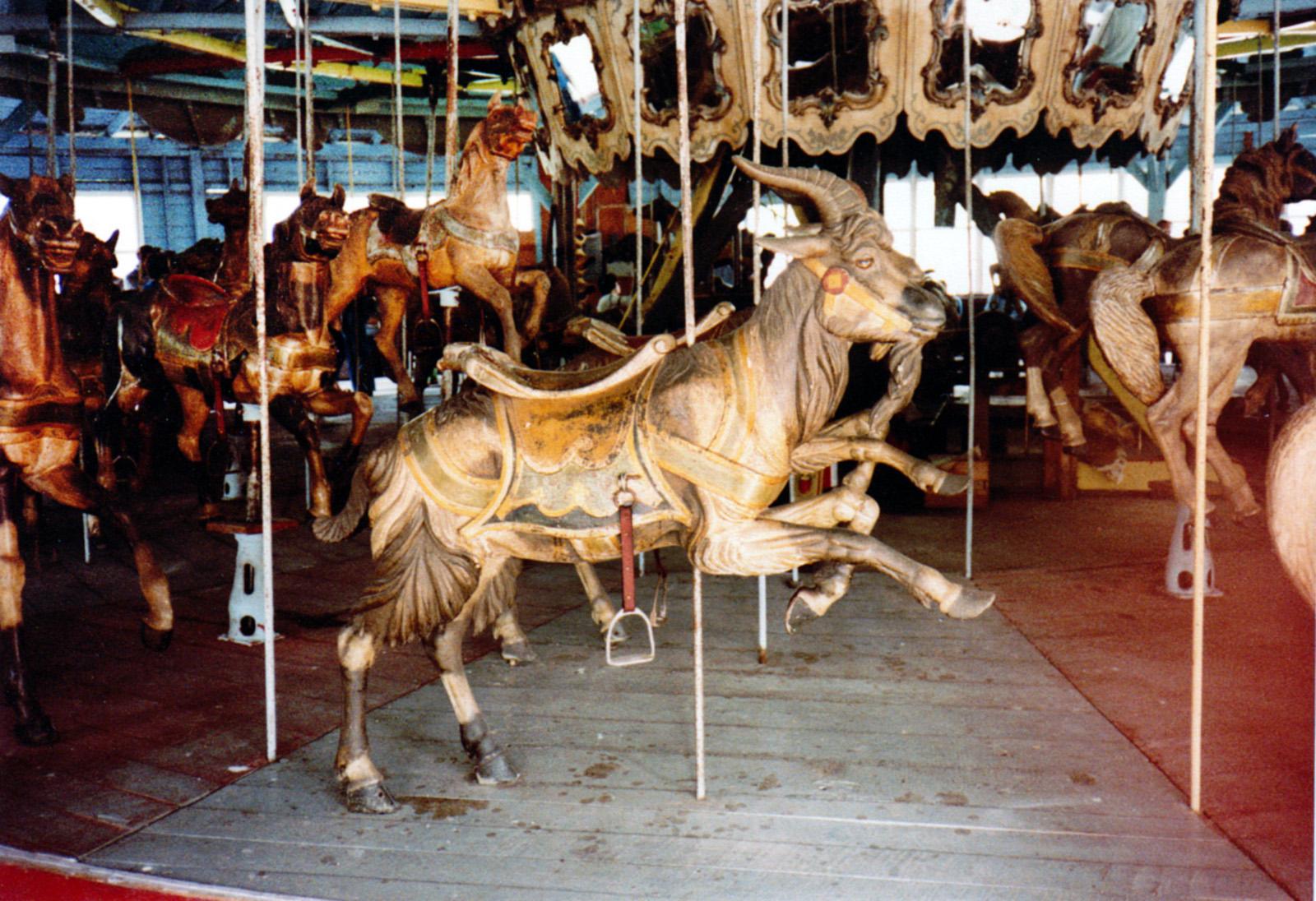 1896-Brookside-Park--Dover-PA-Dentzel-carousel-goat