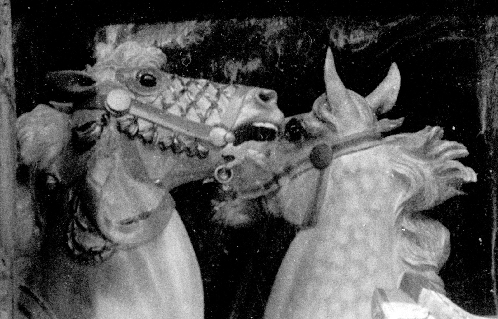 D-C-Muller-shop-carousel-horses-cu-center-1910