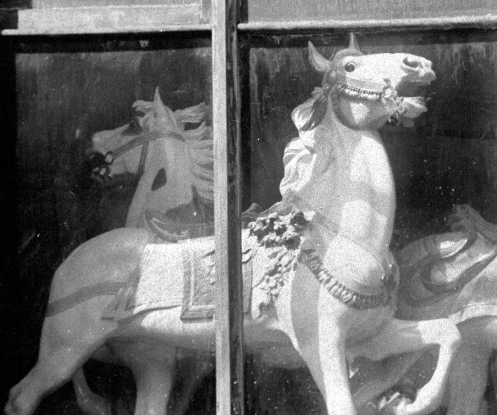 D-C-Muller-shop-window-close-left-ca-1910
