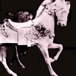Muller-flower-horse-scan