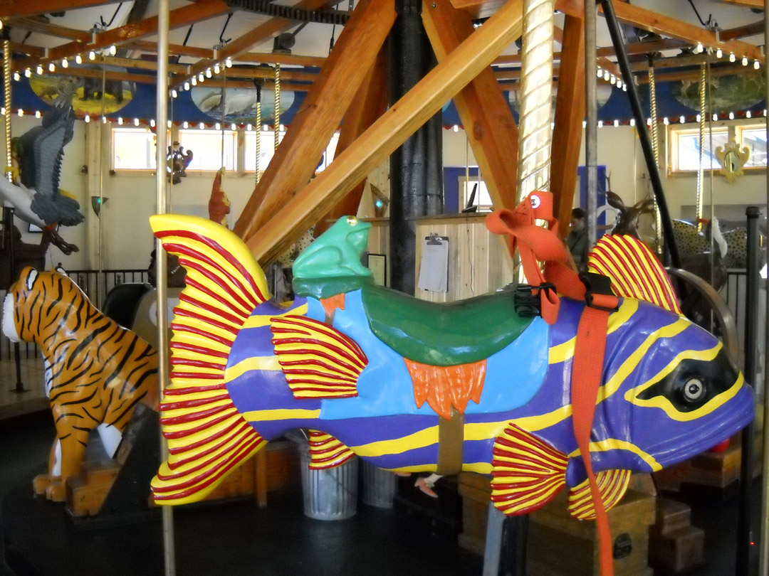 Carousel-of-Happiness-Nederland-CO-fish