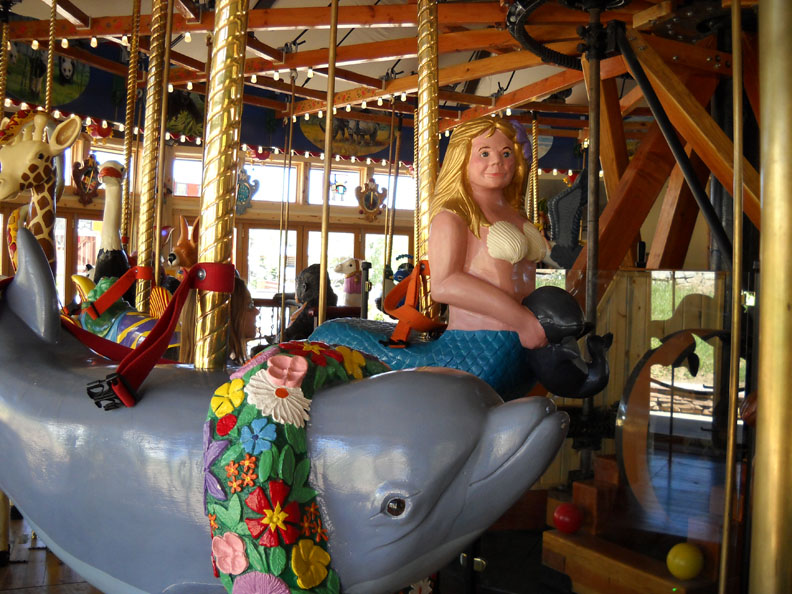 Nederland-CO-Carousel-of-Happiness-dophin