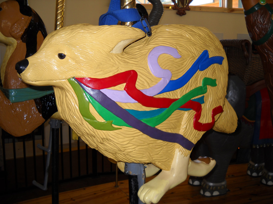 Nederland-CO-Carousel-of-Happiness-fox