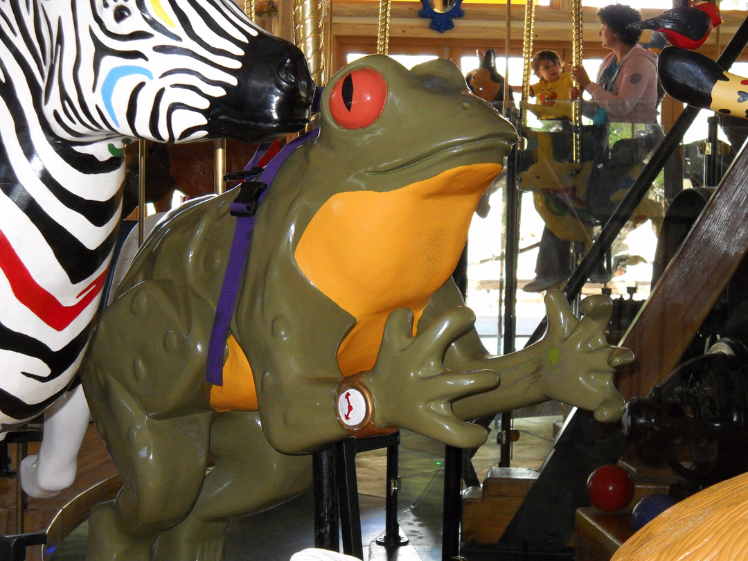Nederland-CO-Carousel-of-Happiness-frog