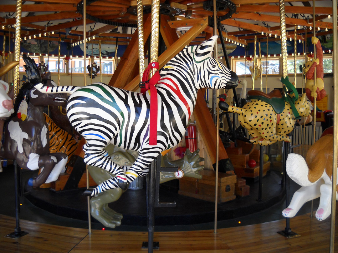 Nederland-CO-Carousel-of-Happiness-zebra