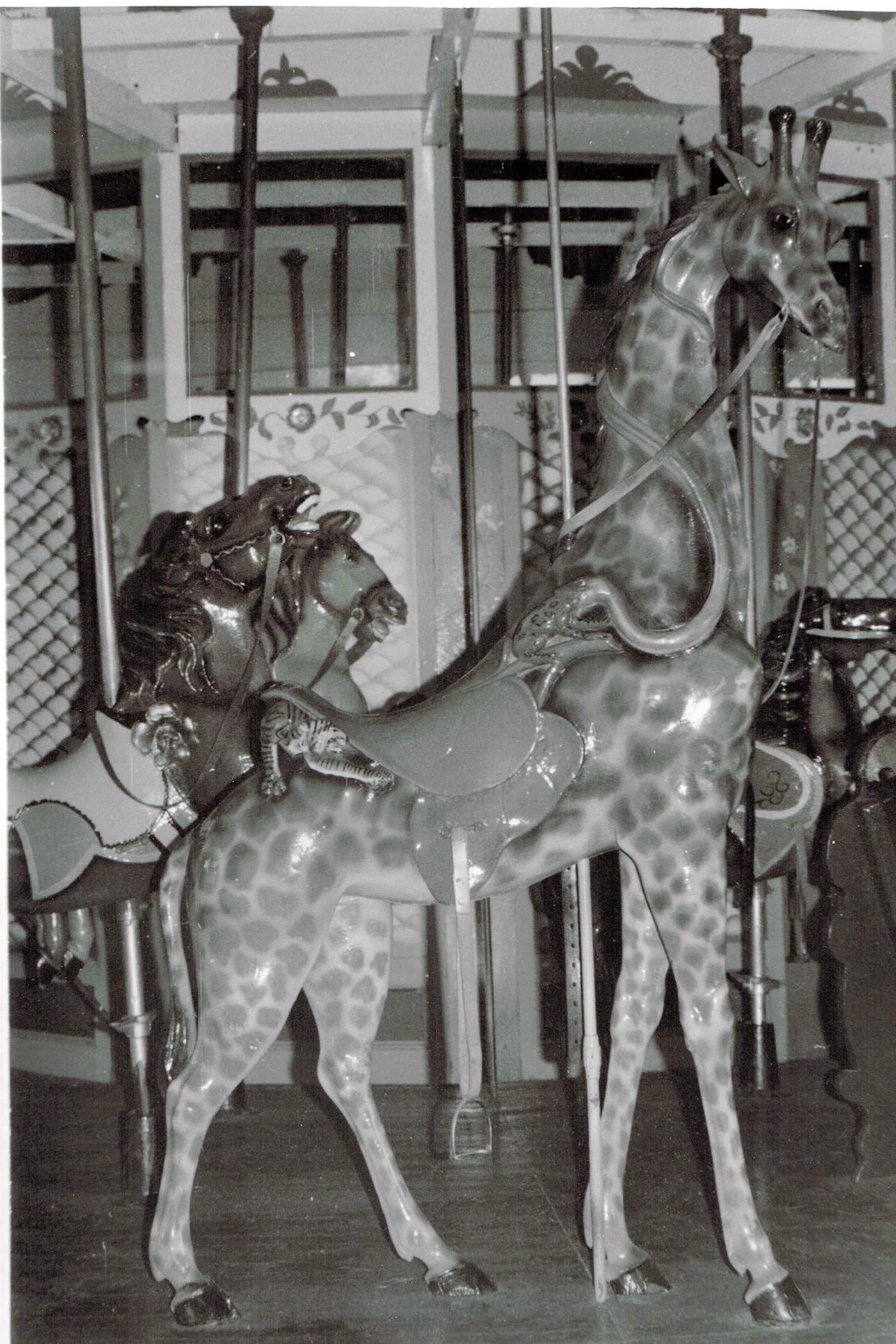 1907-PTC-14-carousel-giraffe-BWilliams-Col