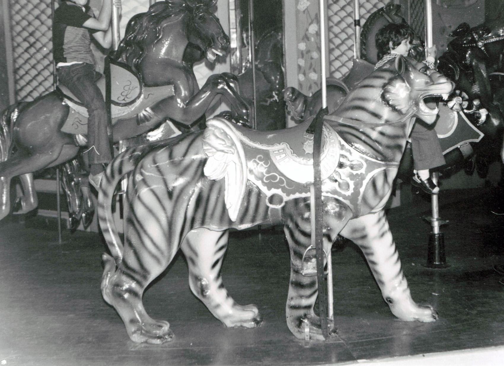 1907-PTC-14-carousel-tiger-BWilliams-Col