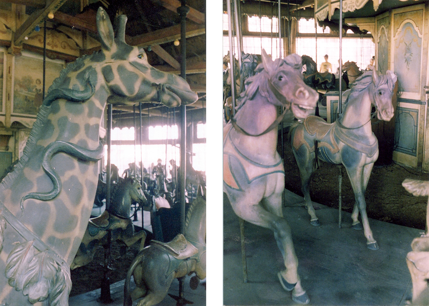 PTC-9-carousel-giraffe-horses-Pine-Grove-1980-B-Williams-photo-8