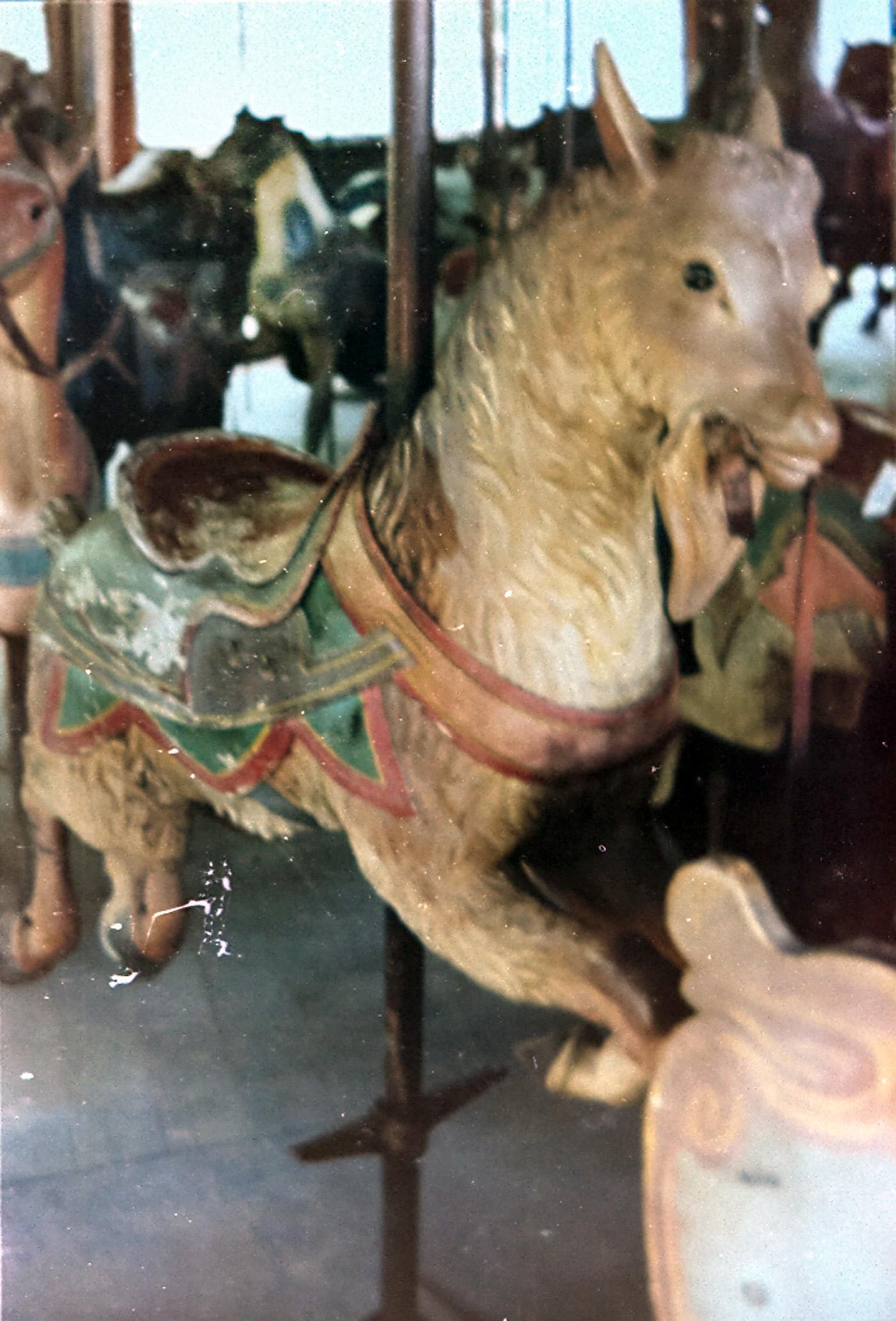 ca-1905-PTC-9-Pine-Grove-PA-carousel-goat