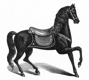 One horse style pictured in the circa 1884 catalog, reminiscent of the horses at Oak Bluffs, Martha's Vineyard, Massachusetts. Fred and Mary Archive, American History Museum, Smithsonian.