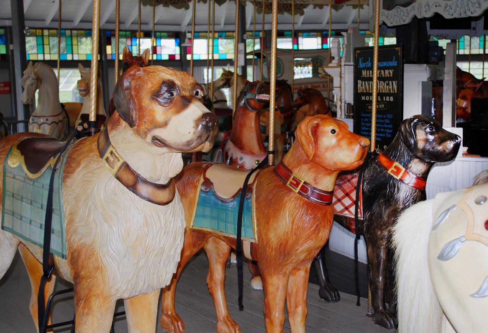 - CAROUSEL DOGS -